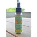 BALM Baby SANITIZE those HANDS! 2.7oz